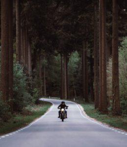 Biker in woods
